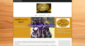 MCR Whips updated by Clients Website Company